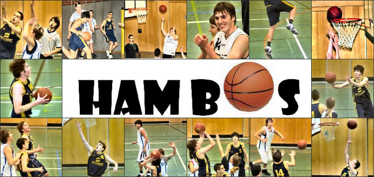 basketball collage